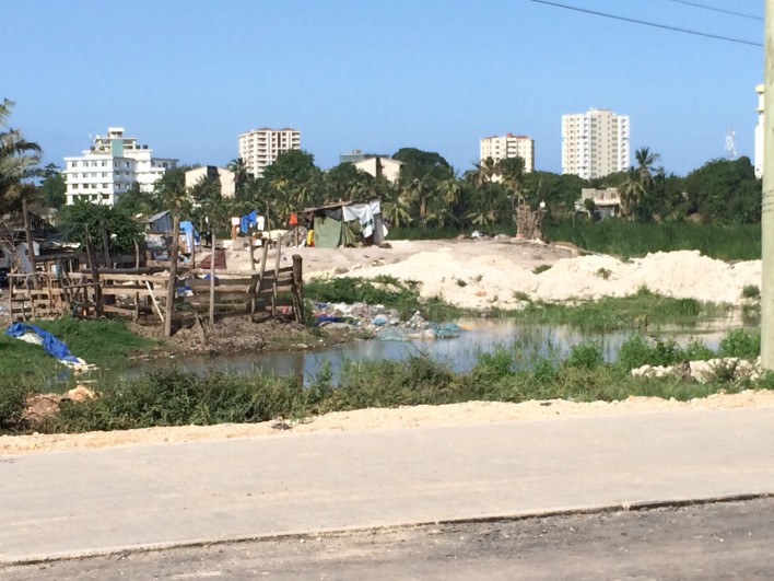 Promoting Green Urban Development in Africa